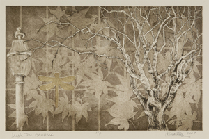 Maple Tree Revisited Etching & Aquatint | 19x12""